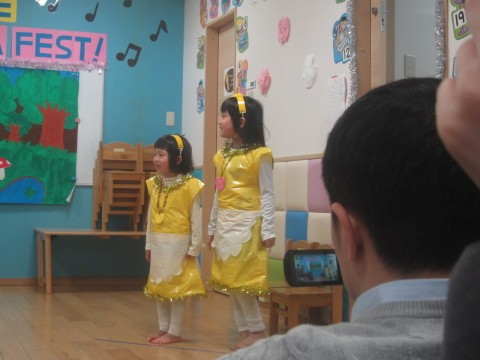 A couple of beautiful Shiny Butterflies performing 'The Golden Goose!'